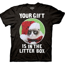 Grumpy Cat Your Gift Is In The Litter Box T-Shirt