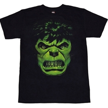 Incredible Hulk Close Up T-Shirt