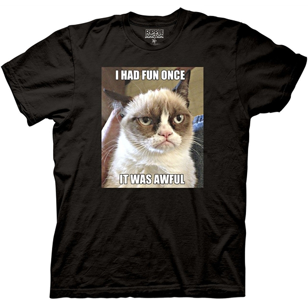 Grumpy Cat I Had Fun Once T-Shirt